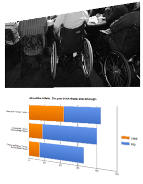 Picture of consultation meeting with disabled people TOP Picture of consultation survey graph BOTTOM